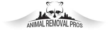 Animal Removal Pros